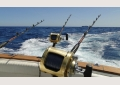 Big-Game-Fishing-Algarve.jpg