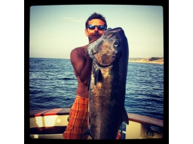 Amberjack-fishing-Imperia.jpg