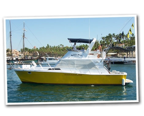 Fishing in los cabos mexico for San jose del cabo fishing charters