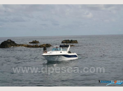 fishing-charter-azores-flores.jpg