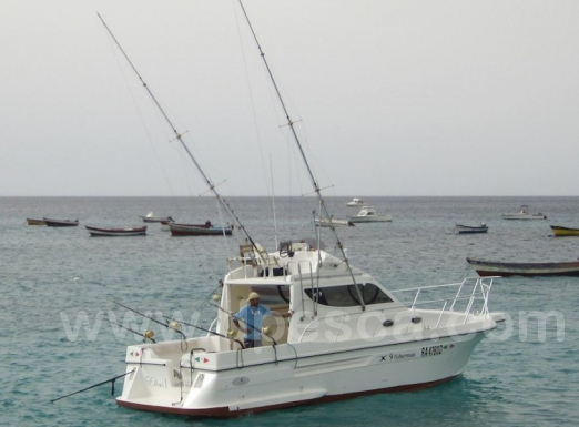 img-981-Big-Jo-Fishing-Cape-Verde.jpg.jpg