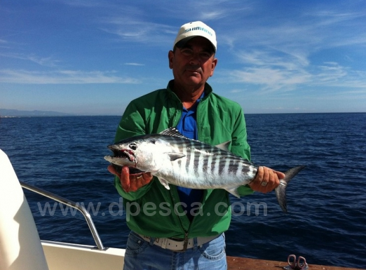 jigging-fishing-spain.jpg
