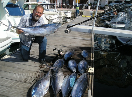 Sea-Fishing-chaters-Alicante.jpg
