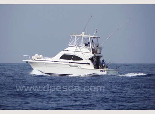 Big-game-fishing-charter-Cabo-Verde.png