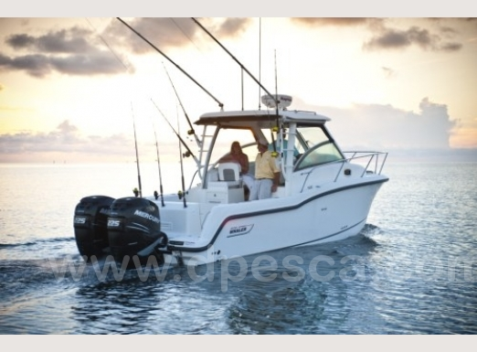Boston-285-Conquest-Fishing-charter-Italy.jpg