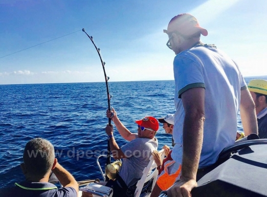 Ametlla-del-Mar-big-game-fishing-Spain.jpeg