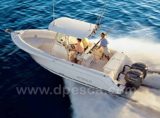 Robalo-260cc-fishing-charter-cambrils-spain.jpg