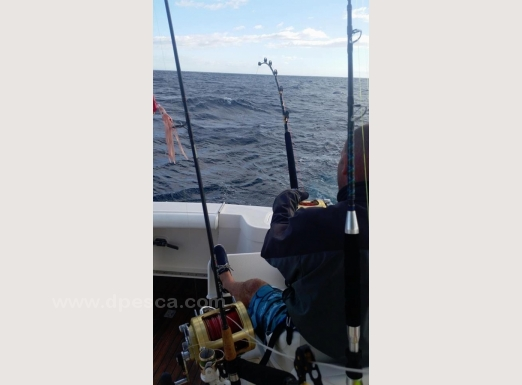 Fishing-in-the-Canary-Islands.jpg