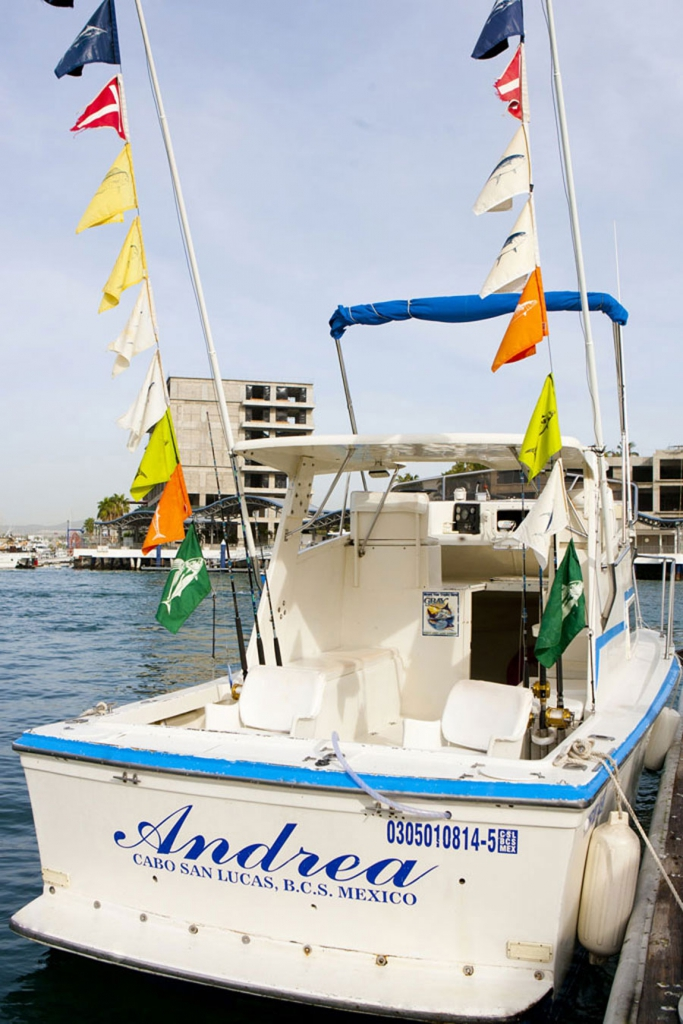 Fishing in baja california los cabos for Los cabos fishing charters