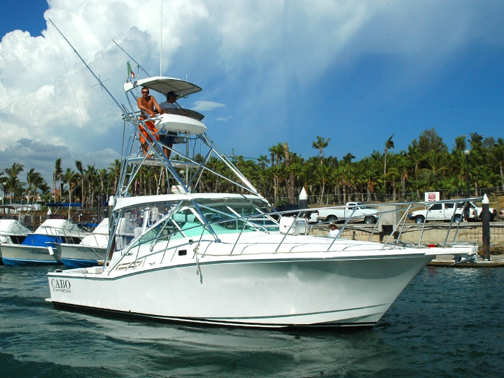 Fishing with cabolero los cabos for Los cabos fishing charters