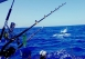 Fishing-in-Canary-Islands.jpg