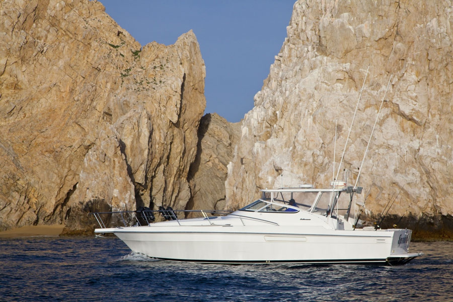 Deep sea fishing with speedweell ii los cabos for Deep sea fishing los angeles