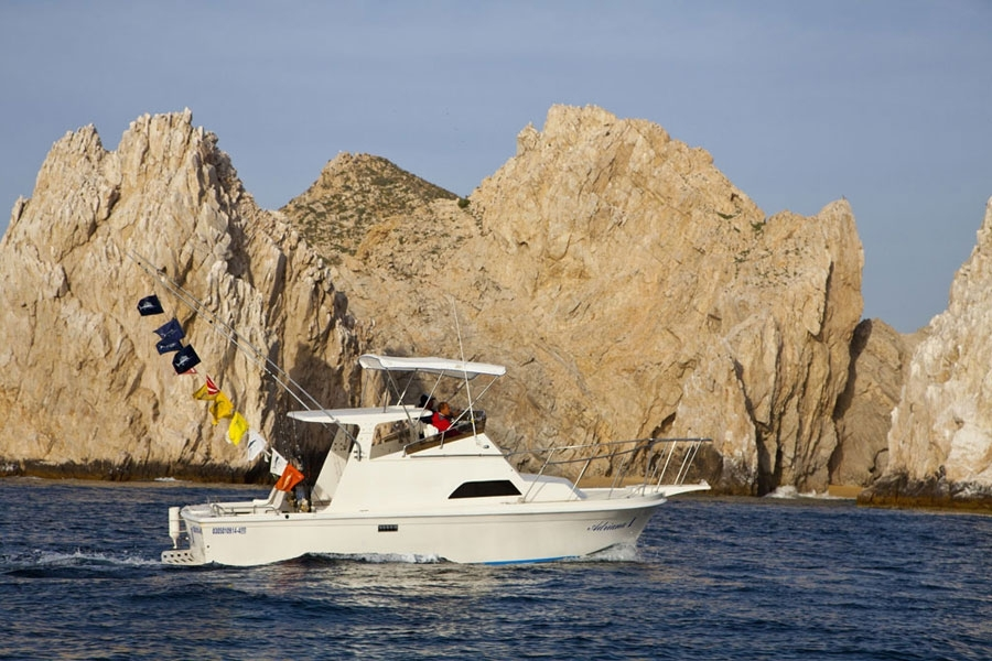 Fishing charter in baja california mexico for Baja california fishing